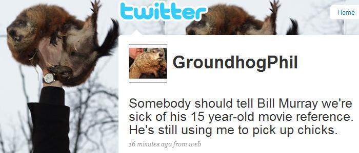 groundhog_phil