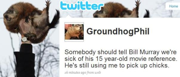 groundhog_phil