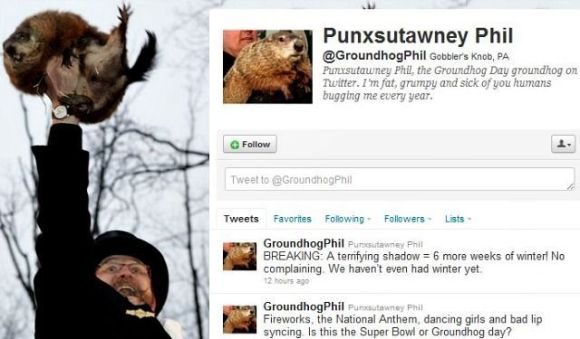 punxsutawney-phil-on-twitter-screenshot