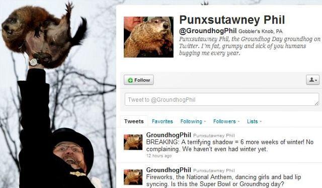 punxsutawney-phil-on-twitter-screenshot
