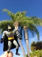 Batman in Miami