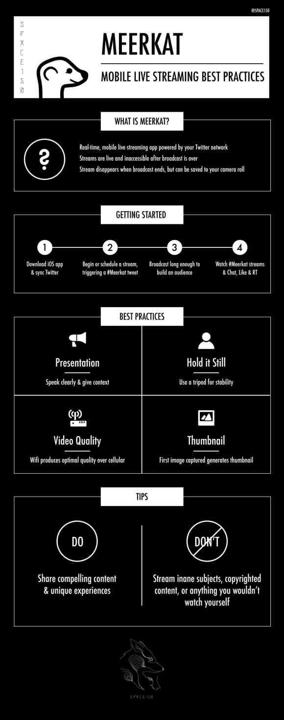 Meerkat App Infographic